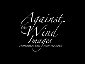 Against The Wind Images